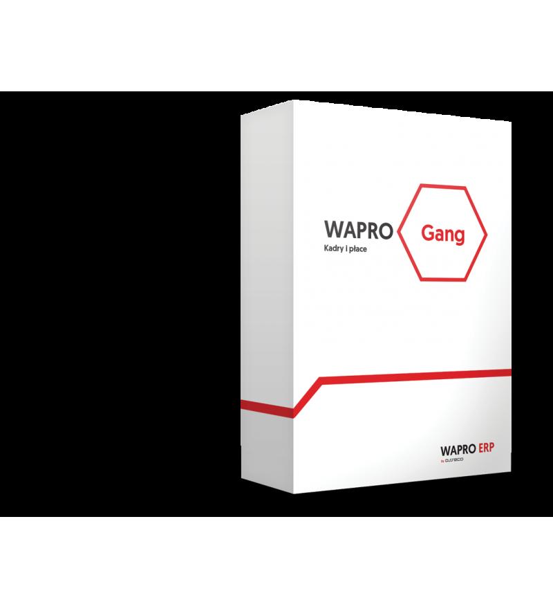 Wersja pudełkowa programu WAPRO GANG