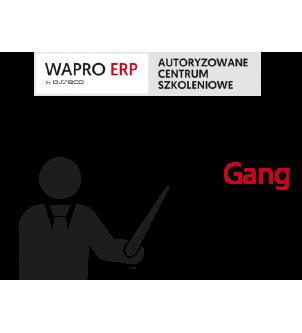 szkolenia wapro gang